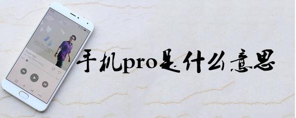 pro是什么意思中文 手机里的pro是什么意思