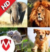 150种动物的声音