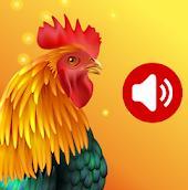 动物铃声app